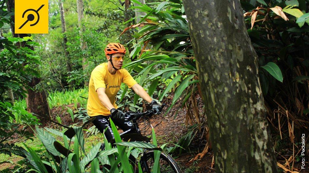 Trilha de mountain bike.