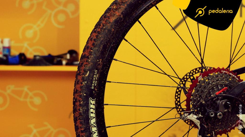 img-Banho_de_Gato_na_Bike_Cassette